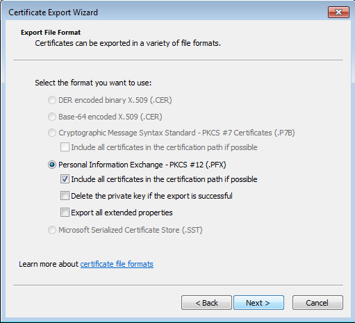 Certificate export dialog - PKCS#12 file parameters